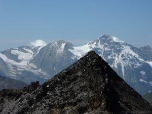 Im Hintergrund das Große Wiesbachhorn