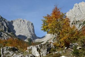 Ellmauer Tor, Herbst