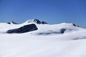 Gepatschferner mit Hint. Hintereisspitze und Hoch Vernagl Wand