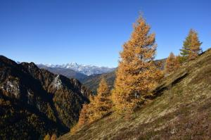 Herbst im Schmirntal