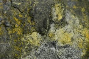 Arsenopyrit